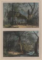 77. Un carbet. 78. Une famille indienne dans une forêt.