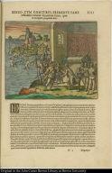Benzo cum comitibus, premente fame testudines venatur secundum littus, quae in ea regione praegandes sunt.