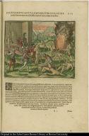 Ferdinandus Sotto crudeliter in Florida praefecturam exercet, abscissis etiam Cacicorum manibus.