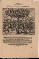 Die Spanier streiten mit den Indianern welche ihre Wohnung auff den Bäumen haben.
