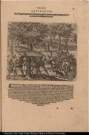 Die Spanier hawen die Bäume darauff die Indianer ihre wohnung haben mit Axten umb und stürtzen sie herunder.