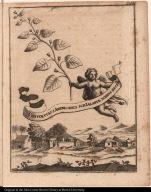 Convolvulus Americanus sub Ialapiae nomine Recept