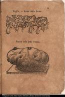 [top] Foglie, e frutto della Patata. [bottom] Frutto solo della Patata.