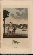[Black woman and man stand on riverbank near a settlement]