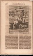 P. Petrus Martinez Hispan. S.I. odio Fidei Christianae occisus à Barbaris Americanis in Insula Florida Ao. 1566.z 8 Septembris