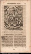 P. Christophorus de Mendoza Soc: Iesu. clarissimo apud Hispanos genere ortus in Peruvia, crudelissimè ab Idololatris pro Christo necatus in Paraquaria Ibiae 25 Aprilis A. 1635.