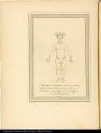 Afbeelding der Touvingas, volgens de tekening door de Societeit van Suriname aan de Hollandsche Maatschappy der Wetenschappen te Haerlem gezonden.