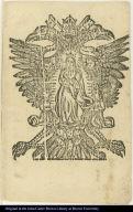 [Virgin of Guadalupe]