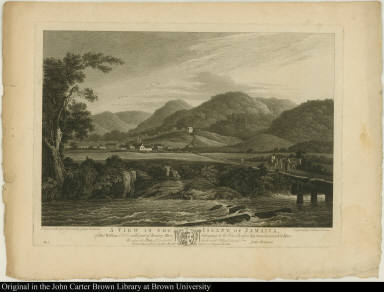 A View in the Island of Jamaica, of Fort William Estate, with part of Roaring River belonging to William Beckford Esqr: near Savannah la Marr.