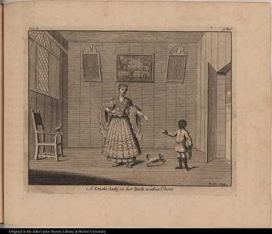 A Creole-Lady in her Dress within Doors