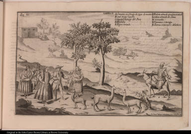 [Costumes, animals, and modes of transportation of Peru]