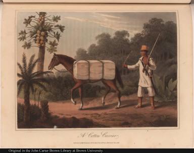 A Cotton Carrier