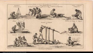 Travaux concernant les diverses préparations du Magnok et pour l'Huille d'Aouara