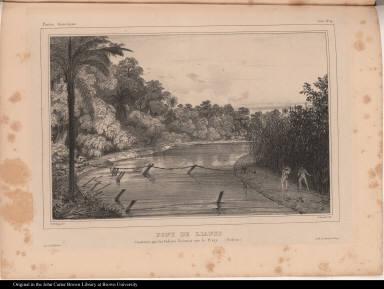 Pont de lianes Construit par les Indiens Sirionos sur le Piray. (Bolivia)