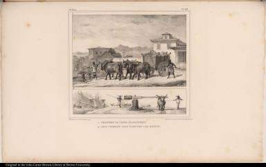 1. Transport de Viande de Boucherie. 2. Joug Tournant pour Dompter les Boeufs.