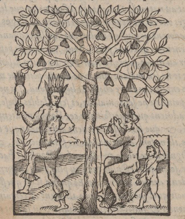 [Des faux Prophetes & Magici[en]es de ce païs qui communiquent auec les esprits malings: & d'vn Arbre nommé Ahouaï.]