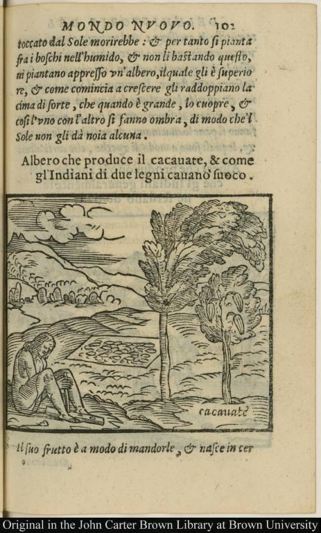 Albero che produce il cacauate, & come gl'Indiani di due legni cauano fuoco.