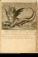 Harpie Femelle, monstre amphibie