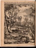 West Indise Beesten