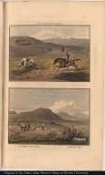 [top] Peon catching cattle. [bottom] Ploughing for wheat. Ostrich nest.