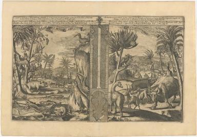 [left] Animaux des Indes Occidentales | West Indise Beesten [right] Animaux des Indes Occidentales | West Indise Beesten etc.