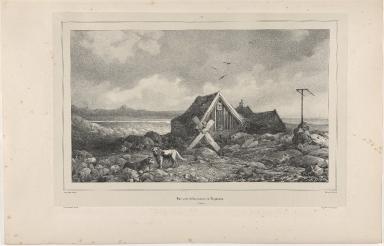 Baer près l'Observatoire de Reykiavik. (Islande)