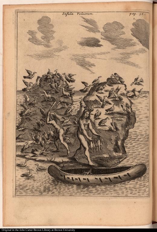 Insula Volucrum