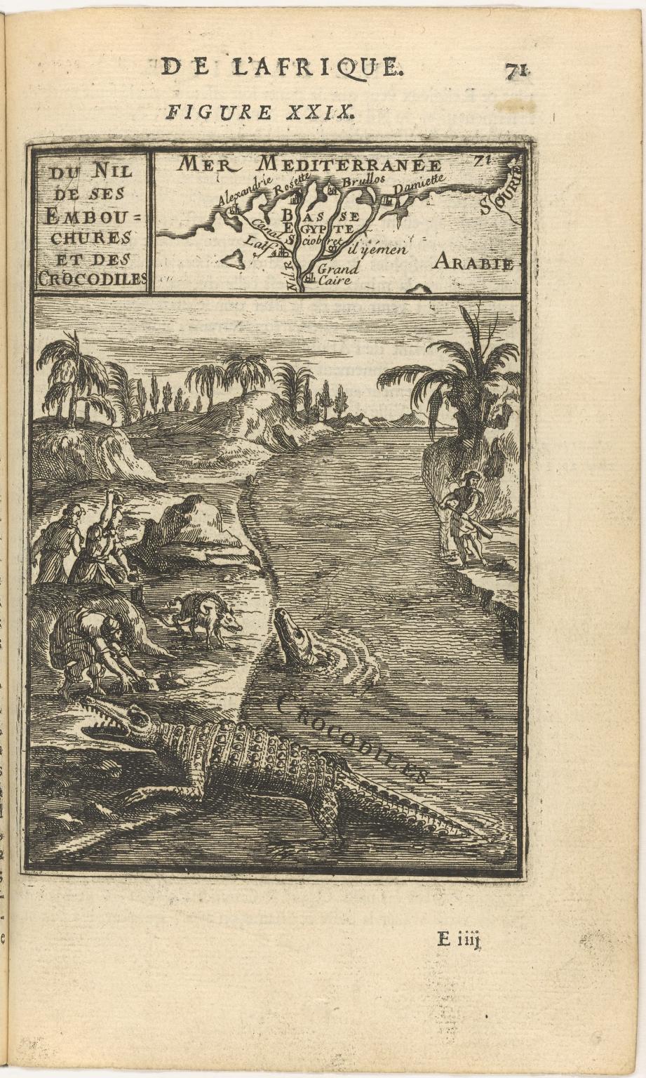 Du Nil de ses Embouchures et des crocodiles