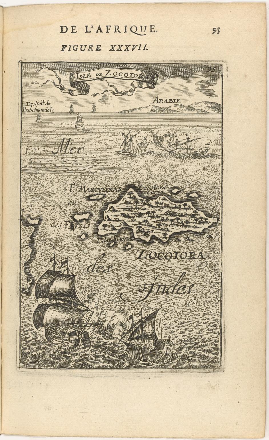Isle de Zocotor